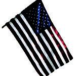 flag 8268419